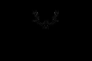 ridge logo
